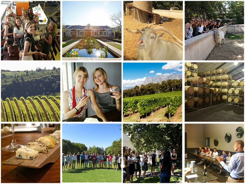Daily Wine Tours from Cape Town